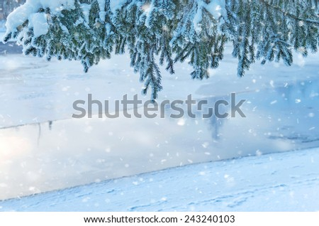 Snow-covered fir-tree branches over the river - stock photo