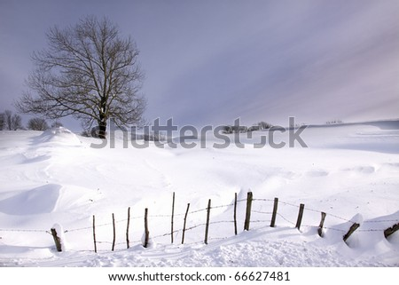 Snow-covered meadow (Northerm Spain) - stock photo