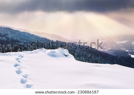 Snow covered mountains at sunset. Beautiful winter landscape. Winter forest.  - stock photo