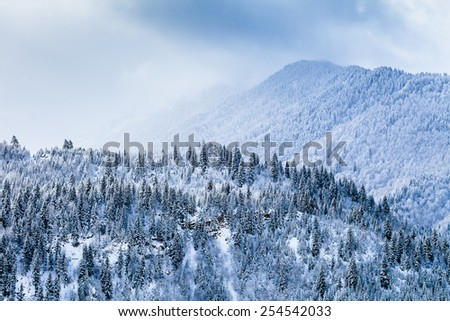 Snow covered slopes of Caucasus Mountains, winter landscape - stock photo