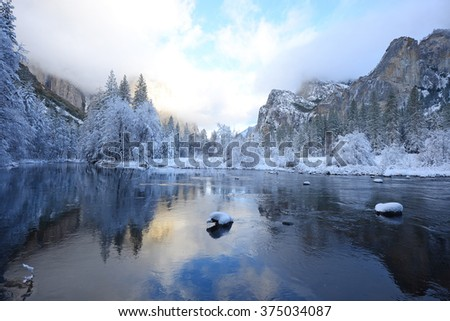Snow covered tree in yosemite with reflection - stock photo
