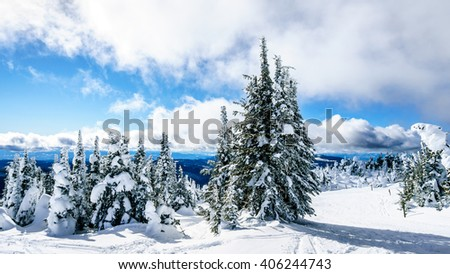 Snow covered trees and deep snow pack in the high alpine near the village of Sun Peaks in the Shuswap Highlands of central British Columbia Canada under blue and partly cloudy skies - stock photo