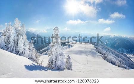Snow covered tress winter landscape - stock photo