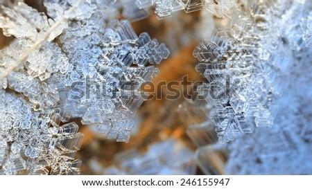 Snow crystals close-up - stock photo