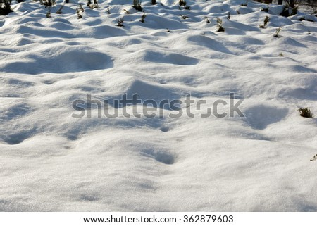 Snow drifts on a sunny day. Winter landscape. Trees in the snow. Bushes in the snow. Fir. Christmas tree. Christmas background. White beautiful snow. - stock photo