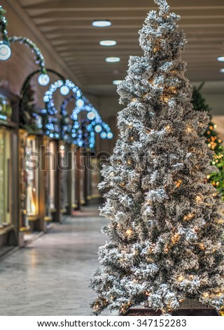 Snow-dusted Christmas tree at lonely cityâ??s street - stock photo