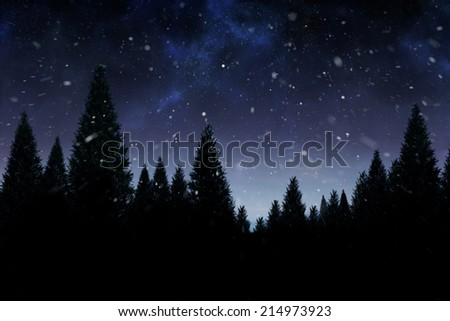 Snow falling on fir tree forest with copy space - stock photo