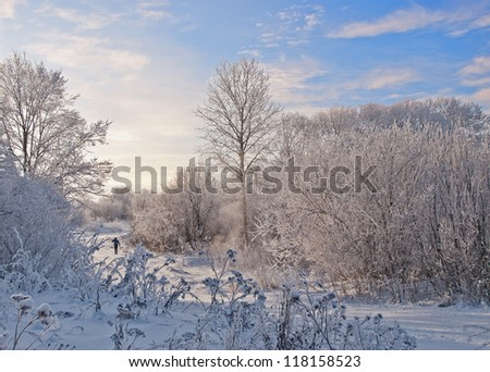 Snow footpath, trees in snow and the blue sky with clouds. The skier runs on a ski track - stock photo