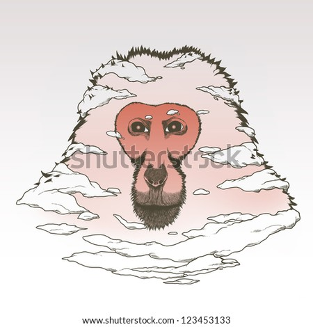 Snow japanese monkey - stock photo
