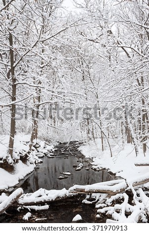 Snow kissed trees surround the fallen logs that cross the dark water of a winter stream. - stock photo