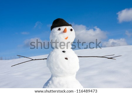 Snow man on nature in sunny cold day - stock photo