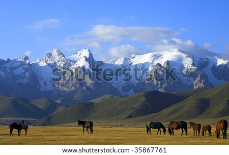 snow mountains, green grass and horses - stock photo