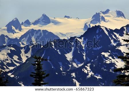 Snow Mountains Hurricane Ridge Olympic National Park Washington State Pacific Northwest Closeup Evergreen - stock photo