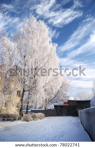 snow on trees in the city - stock photo