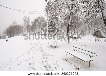 Snow storm/ Snow storm on the bank of Danube river two days after Christmas. Braila, Romania, December 27, 2014. - stock photo