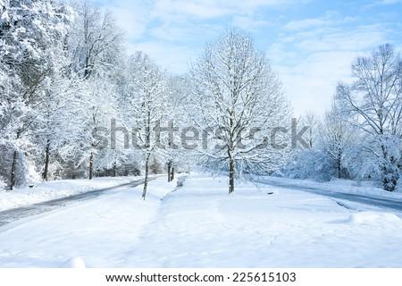 snow time - stock photo