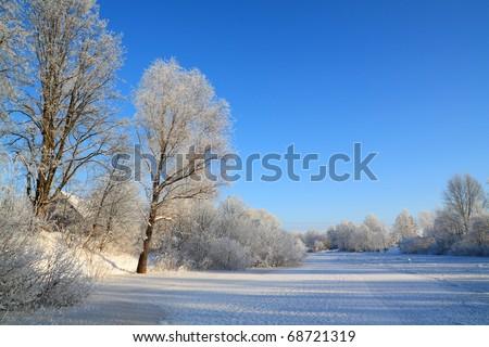 snow tree on coast winter river - stock photo