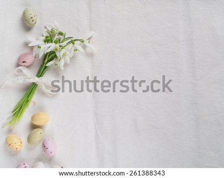 Snowdrop with chocolate egg for easter, selective focus - stock photo