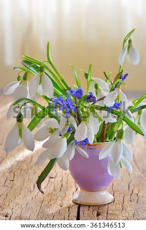 Snowdrops in vase on wooden background - stock photo