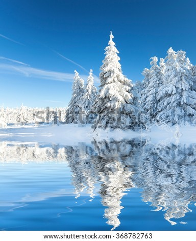 snowfall in amazing winter landscape with sunshine and blue sky  - stock photo