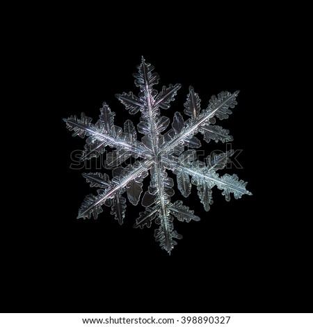 Snowflake isolated on black background: real snowflake macro photo, captured on dark woolen fabric in natural light. This is large crystal of stellar dendrite type. - stock photo