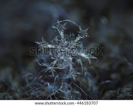 Snowflake on dark textured background: macro photo of real snow crystal on black woolen fabric in diffused light of cloudy sky. This is large stellar dendrite snowflake  with sharp and ornate arms. - stock photo