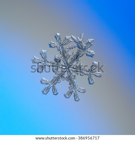 Snowflake on smooth gradient background: macro photo of real snow crystal on glass surface with LED back light. This is large snowflake of stellar dendrite type. - stock photo