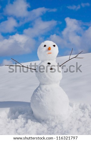 Snowman on nature in sunny cold day - stock photo