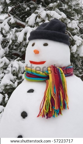 Snowman wearing colorful scarf - stock photo