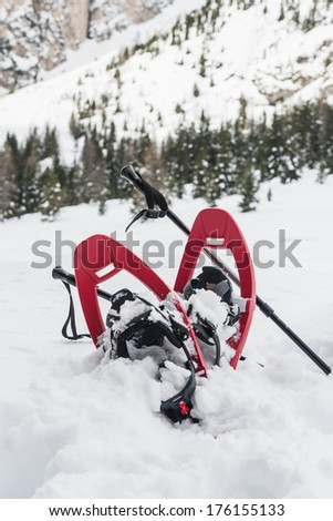 Snowshoes and sticks over snow and snow-capped mountain - stock photo