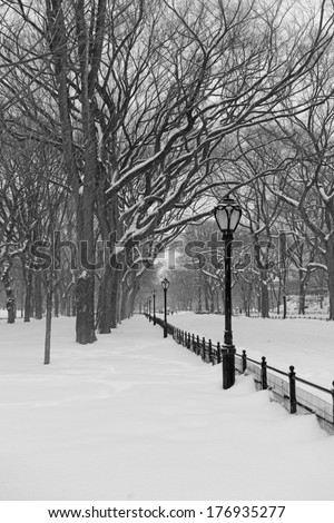 Snowstorm in Central Park, Manhattan New York - stock photo