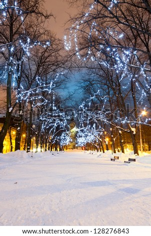 Snowy avenue with Christmas lights on trees in the evening - stock photo