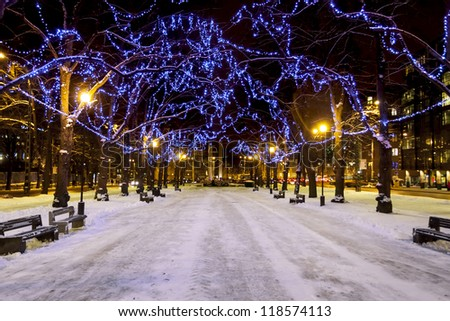 Snowy avenue with trees decorated with blue Christmas lights in Tallinn, Estonia - stock photo