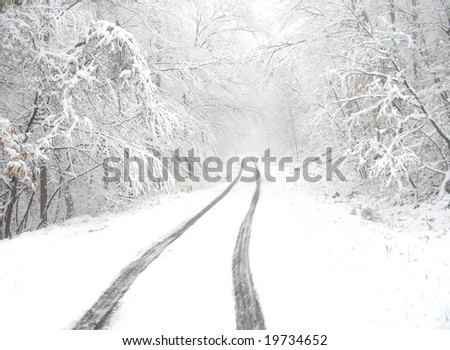Snowy country lane - stock photo