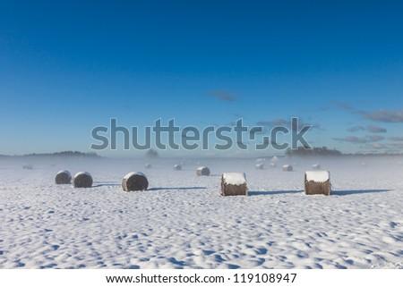 snowy hay bales with fog near farm - stock photo