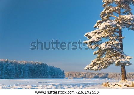 Snowy Lake Frosty Winter  - stock photo