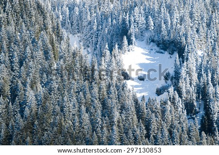 Snowy Overlook at Mount Rainier National Park - stock photo