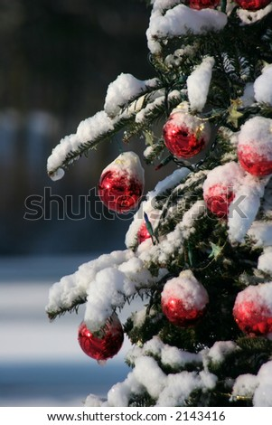 snowy pine tree decorated for xmas - stock photo