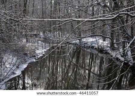 Snowy Scene - stock photo