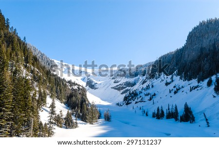 Snowy Valley at Mount Rainier National Park - stock photo