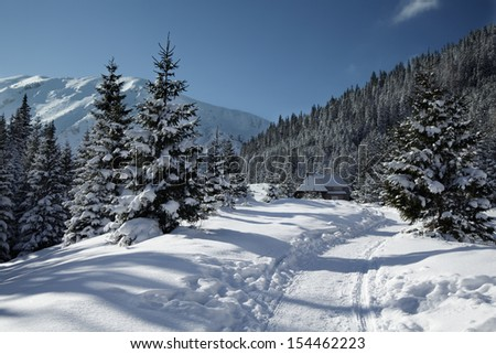 Snowy view in Tatra Mountains, winter landscapes series. - stock photo
