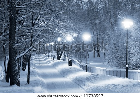 Snowy walkway - stock photo
