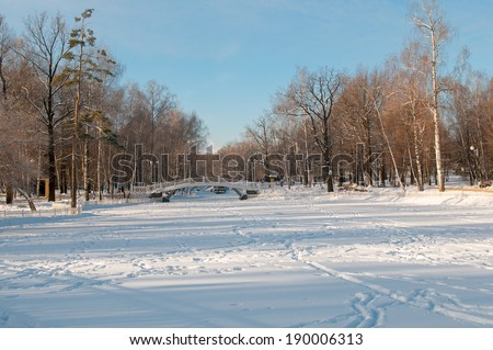 Snowy winter morning in the park near the frozen pond - stock photo