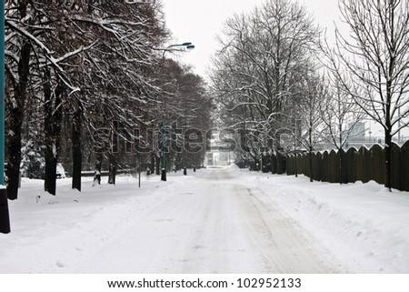Snowy Winter Street - stock photo