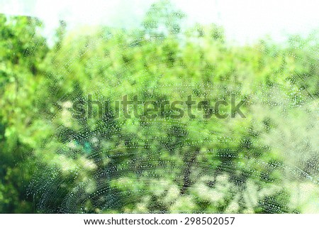 Soap window on a background of trees - stock photo