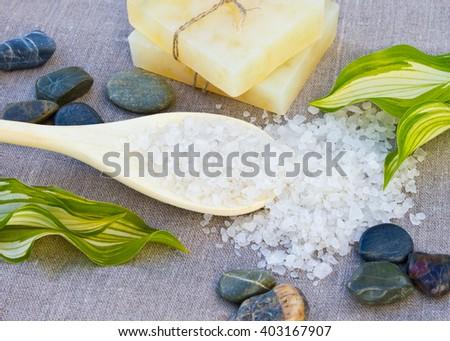 Soap with sea-salt spa - stock photo