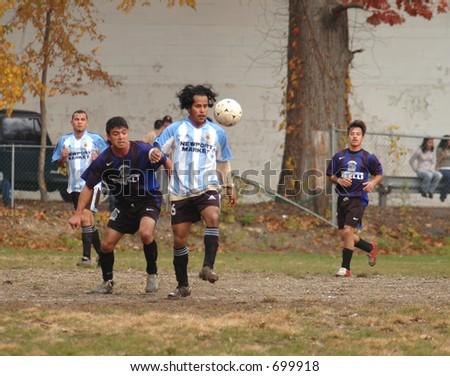 soccer433 - stock photo