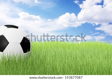 Soccer ball on green field and blue sky - stock photo