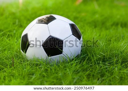 Soccer ball on green grass field closeup - stock photo