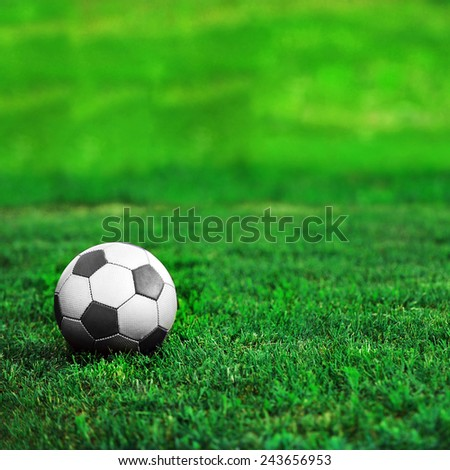 soccer ball on  green lawn. summer's day - stock photo